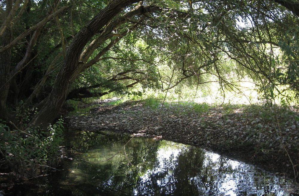 fiume tanagro campania foto