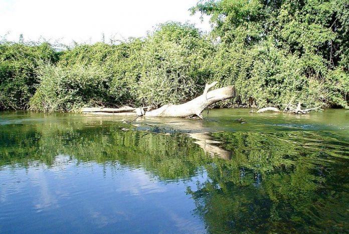 fiume volturno foto
